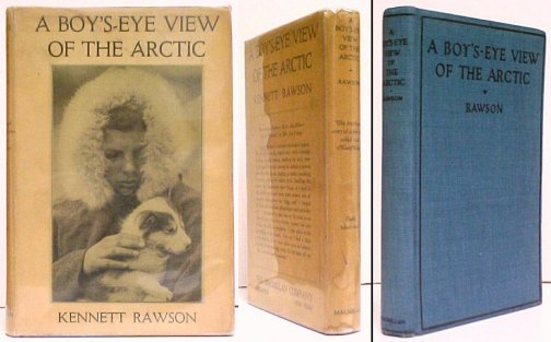 Image for Boy's-Eye View of the Arctic. US in dj.