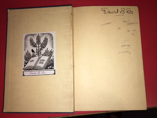 Image for Witness Tree. First Edition.