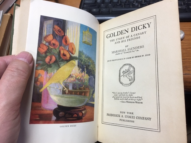 Image for Golden Dicky : The Story of a Canary and His Friends. First Edition.