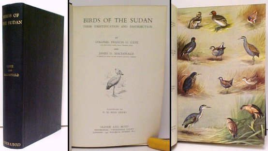 Image for Birds of the Sudan : Their Identification and Distribution.  First Edition