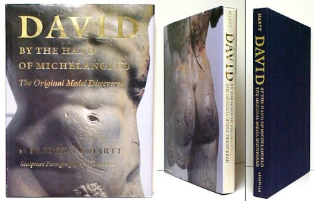 Image for David by the Hand of Michelangelo.  in dj.