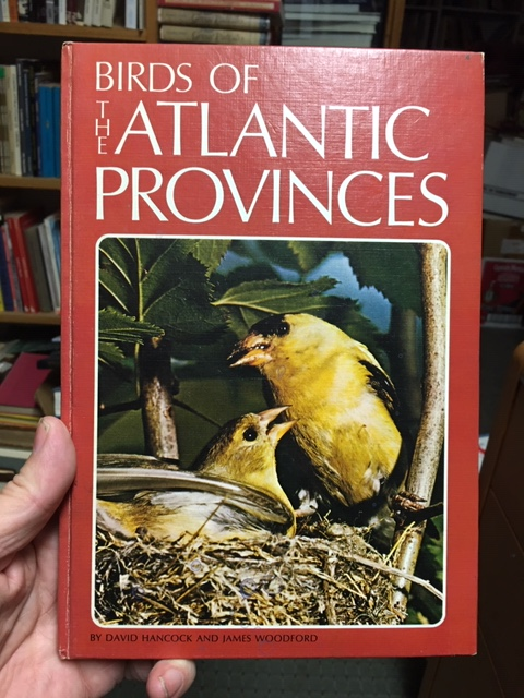 Image for Birds of the Atlantic Provinces : Some of the common and uncommon. First Edition