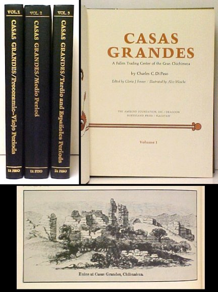 Image for Casa Grandes : A Fallen Trading Center of the Gran Chichimeca.  Three Volumes